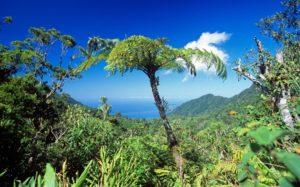 Африка Коморские Острова
