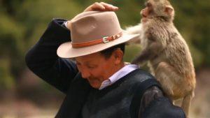 «Отец обезьян» в Тибете