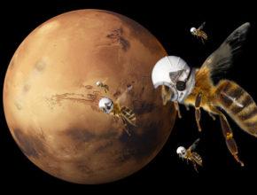 NASA разрабатывает план отправки роботов-пчел на Марс